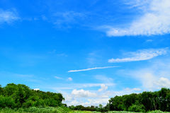 Blue sky and cloud with tree. Landscape background Stock Photography