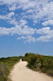 Blue Sky and Clouds above Sandy Path in Western Australia. Sandy path in nature with Australian bush under a blue sky with clouds Stock Photography