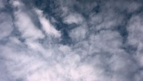 Blue sky and clouds. Beautiful piling up clouds on a blue calm sky. Static shiot. stock video