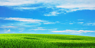 Blue sky with clouds and green grass in summer Royalty Free Stock Photos