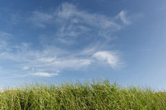 Blue sky, clouds and green grass Royalty Free Stock Photos