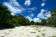 Blue sky and clouds in Havelock island. Andaman islands, India Royalty Free Stock Images