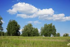 Blue sky with clouds over the field royalty free stock photo