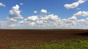 Blue sky with clouds over plowed field stock video
