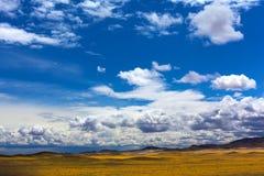 Blue sky over yellow steppe. The blue sky and the clouds over the yellow steppe royalty free stock photos