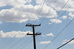A blue sky with clouds and telephone wires. A beautiful blue sky with white fluffy clouds and telephone wires Royalty Free Stock Image
