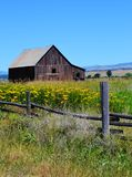 BLUE SKY COUNTRY OLD WOODEN BARN Royalty Free Stock Images