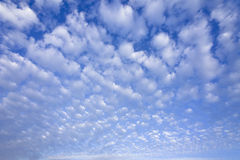 Blue sky with cumulus clouds Stock Photo