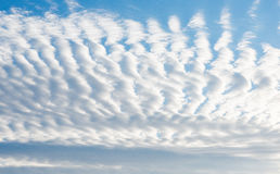 Blue sky with curly clouds Royalty Free Stock Photo