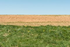 The blue sky, dried up earth with sprouting vegetation and part of the field with an abundance of grass. Blue sky, dried up earth with sprouting vegetation and Stock Photos