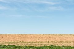 The blue sky, dried up earth with sprouting vegetation and part of the field with an abundance of grass. Blue sky, dried up earth with sprouting vegetation and Royalty Free Stock Images