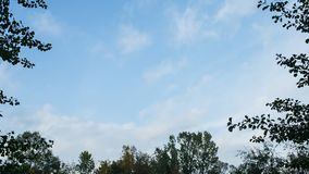 Gentle blue sky of fall, timelapse. Blue sky of fall, time lapse, framed by branches. Copy space stock video footage