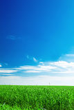 Blue sky and field Royalty Free Stock Image