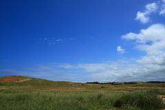 Blue sky and field Royalty Free Stock Photography