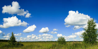 Blue Sky and Field Panorama Royalty Free Stock Image