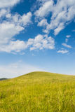 Blue sky and field. Field with blue sky and white clouds on background stock image