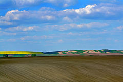 Blue sky and fields. Colorful fields and blue cloudy sky Royalty Free Stock Photos
