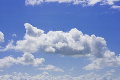 Blue sky filled with white fluffy clouds Royalty Free Stock Image