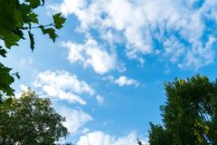 Blue sky with fine cloud formation stock image