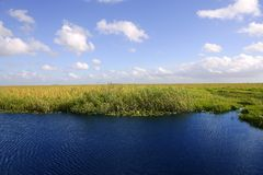 Blue sky in Florida Everglades Stock Photos