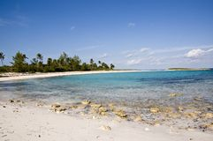 Blue sky and fluffy clouds on the beach. Fluffy clouds floating on a clear day at the beach with coconut trees in the background Royalty Free Stock Photos