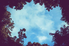 Blue sky frame. Blue sky with cloud, nature frame and background Royalty Free Stock Photo