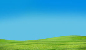 Blue sky and grass Royalty Free Stock Photo