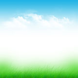 Blue sky and green field Royalty Free Stock Photo