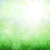 Blue sky and green field. Blue sky, clouds green field grunge background Stock Photo