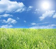 The blue sky and green grass. Stock Images