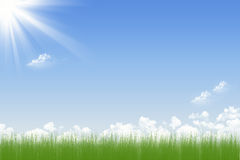 Blue sky and green grass. Abstract background of blue sky and green field Royalty Free Stock Images