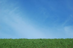 Blue sky and green grass Royalty Free Stock Photos