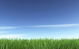 Blue sky and green grass. Nature background Stock Photo