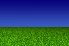 Blue sky and green grass Stock Image