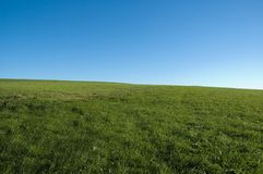 Blue sky, green grass stock photography
