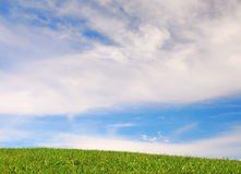 Blue sky, green grass. Blue sky above green grass Stock Image