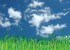 Blue sky,green grass and clouds Stock Photos