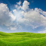 Blue sky and green grass meadow Royalty Free Stock Image