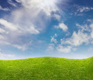 Blue sky and green grass meadow Stock Image