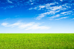 Blue sky and green grass scene Stock Images