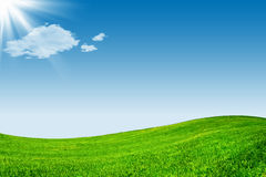 Blue sky and green grassland Royalty Free Stock Photos