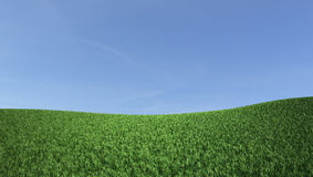 Blue sky and green hill. Nature background Stock Photography