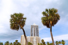 Blue sky and grey clouds over Miami Beach palms and buildings. Stock Images