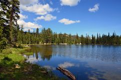 Blue Sky At Gumboot Lake. Summer day and blue sky over Gumboot Lake Stock Photos
