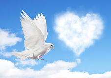 Blue sky with hearts shape clouds and dove. Stock Images