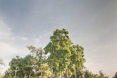 blue sky krajobrazu Zdjęcie Royalty Free