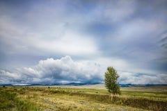 Blue sky landscape Stock Images