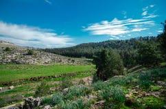 Blue sky landscape stock photography