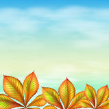 A blue sky and the leafy plants Stock Image