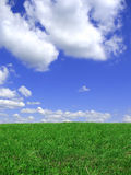 Blue sky and meadow background Royalty Free Stock Photos